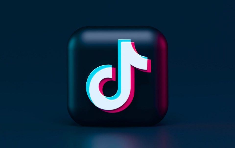 How These Perfect TikTok Marketing Tactics Propel Brands To Success